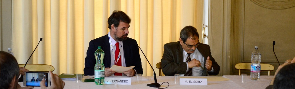 NREA and AAE signed a MoU within the MED-DESIRE project