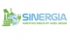 ENEA capitalization event organized by Sinergia project